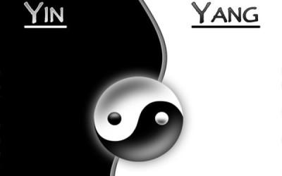 A la découverte de la macrobiotique ou le grand principe du Yin et du Yang