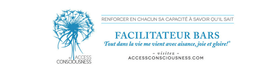 A la rencontre d'Access Bars